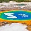 Saychik - Yellowstone Park (8.11 Remix)